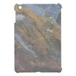 Textura de la superficie de Boulder iPad Mini Funda