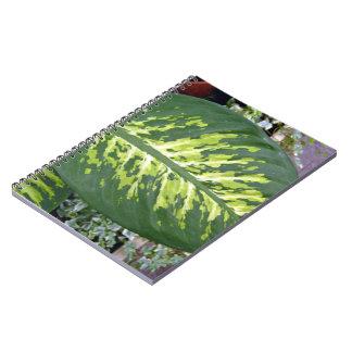 Textura de las hojas del Croton detalladamente Cuaderno