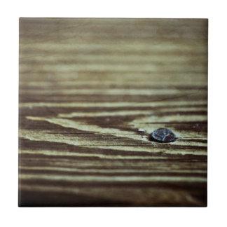 Textura de madera del grano azulejo cuadrado pequeño