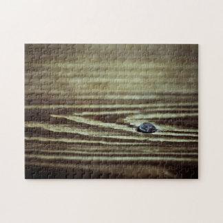 Textura de madera del grano puzzles con fotos
