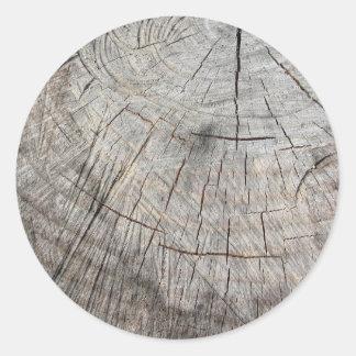 Textura de madera del tronco de árbol cortado de pegatina redonda
