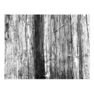Textura de madera tarjetas postales