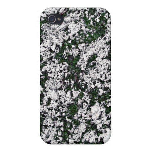 Textura de tierra del ed de la nieve iPhone 4 cobertura