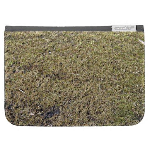 Textura de tierra herbosa