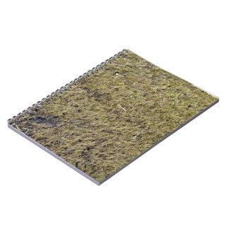 Textura de tierra herbosa libros de apuntes