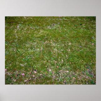 Textura de tierra herbosa posters