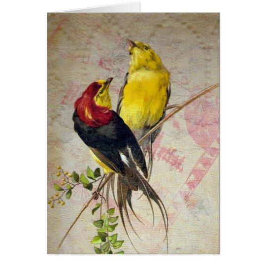 Textura del cordón de los pájaros del vintage tarjeta de felicitación