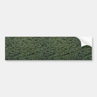 Textura del follaje etiqueta de parachoque