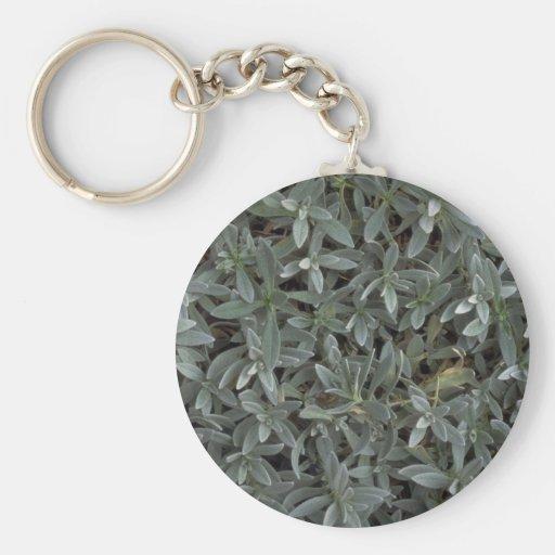 Textura del follaje llavero redondo tipo pin