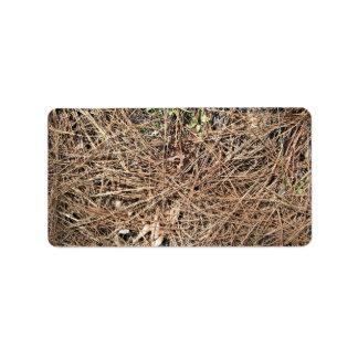 Textura del fondo de las hojas secas del pino etiquetas de dirección