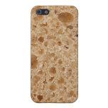 Textura del pan iPhone 5 cárcasas