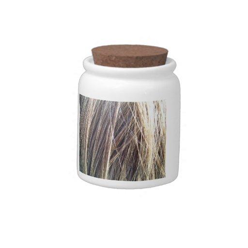 Textura del pelo de Brown Jarra Para Caramelo