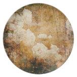 textura floral del fondo del vintage del grunge de plato