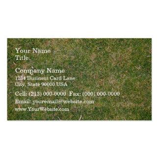 Textura fresca de la hierba verde plantilla de tarjeta personal