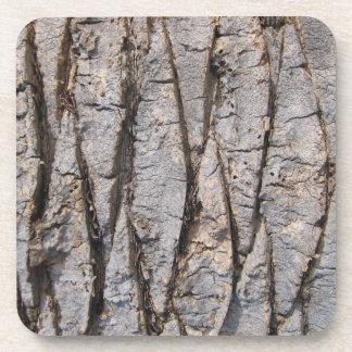 Textura gris de la corteza de árbol posavaso