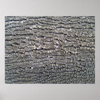 Textura horizontal de la corteza de árbol impresiones