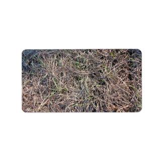 Textura larga del campo de hierba que brilla en lu etiqueta de dirección