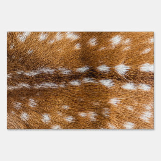 Textura manchada de la piel de los ciervos señal
