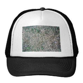 Textura muerta de la hierba gorra