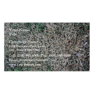 Textura muerta de la hierba plantilla de tarjeta de visita