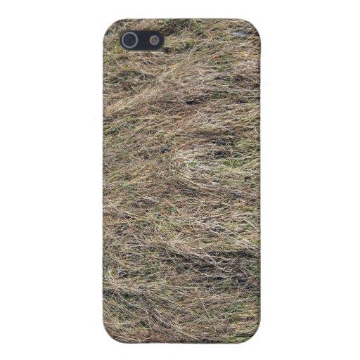 Textura muerta larga de la hierba iPhone 5 carcasas