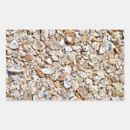 Textura natural de las cáscaras del mar rectangular altavoz