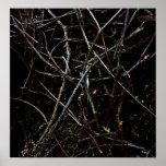 Textura oscura de las raíces poster
