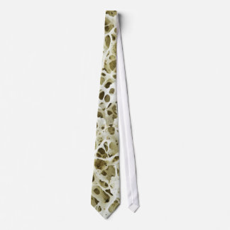 Textura porosa magnificada del hueso humano de la  corbata