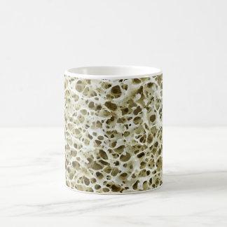 Textura porosa magnificada del hueso humano de la taza básica blanca