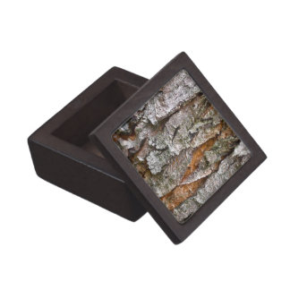 Textura real de la corteza de árbol caja de joyas de calidad