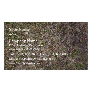 Textura sucia de la hierba seca de Brown Tarjeta De Visita