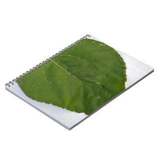 Textura verde de la hoja cuadernos
