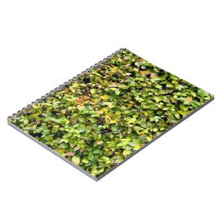 Textura verde del seto libros de apuntes