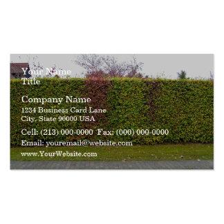 Textura verde del seto plantillas de tarjeta de negocio
