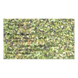 Textura verde del seto tarjetas de visita