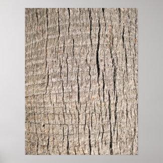 Textura vertical del tronco de palmera impresiones