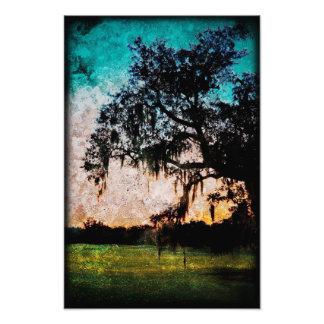 Texturas de la puesta del sol de Audubon Impresión Fotográfica