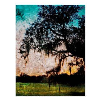 Texturas de la puesta del sol de Audubon Tarjetas Postales