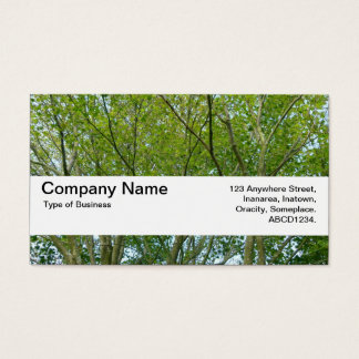 Texture Band V2 - Japanese Maple Business Card