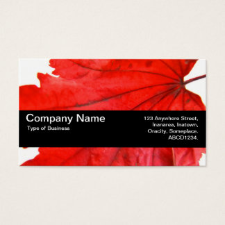 Texture Band V2 - Japanese Maple Leaf Business Card