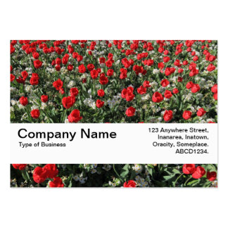 Texture Band V2 - Red Tulips and Primroses Large Business Card