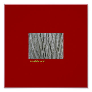 texture evoluc photo poster