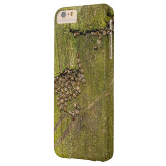 Texture of tree bark barely there iPhone 6 plus case