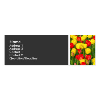 Texture Tone - Colorful Tulips Mini Business Card