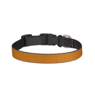 Textured Burnt Orange Pet Collar