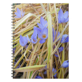 Textured Fall Crocuses in Straw Spiral Notebook.