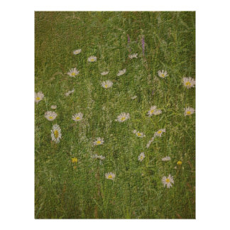 Textured Field Of Daisies Floral Scrapbook Paper