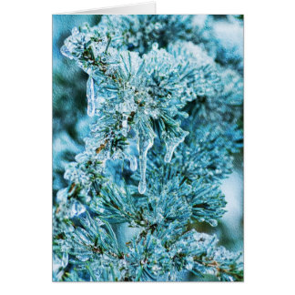 Textured Icy Pine Card