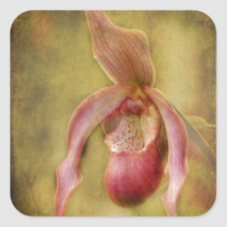 Textured Lady Slipper Orchid Square Sticker
