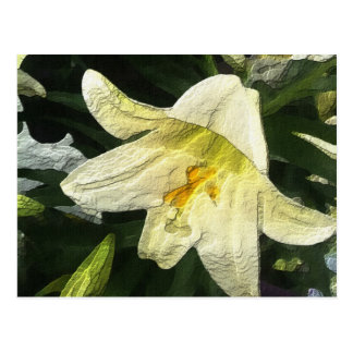 Textured Lilly Postcard